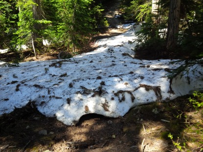 Snow on the trail at 4000'